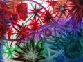 RecreArte-2013_02_21-Mi-estrella-fugaz-equilibrio-50x70-cms